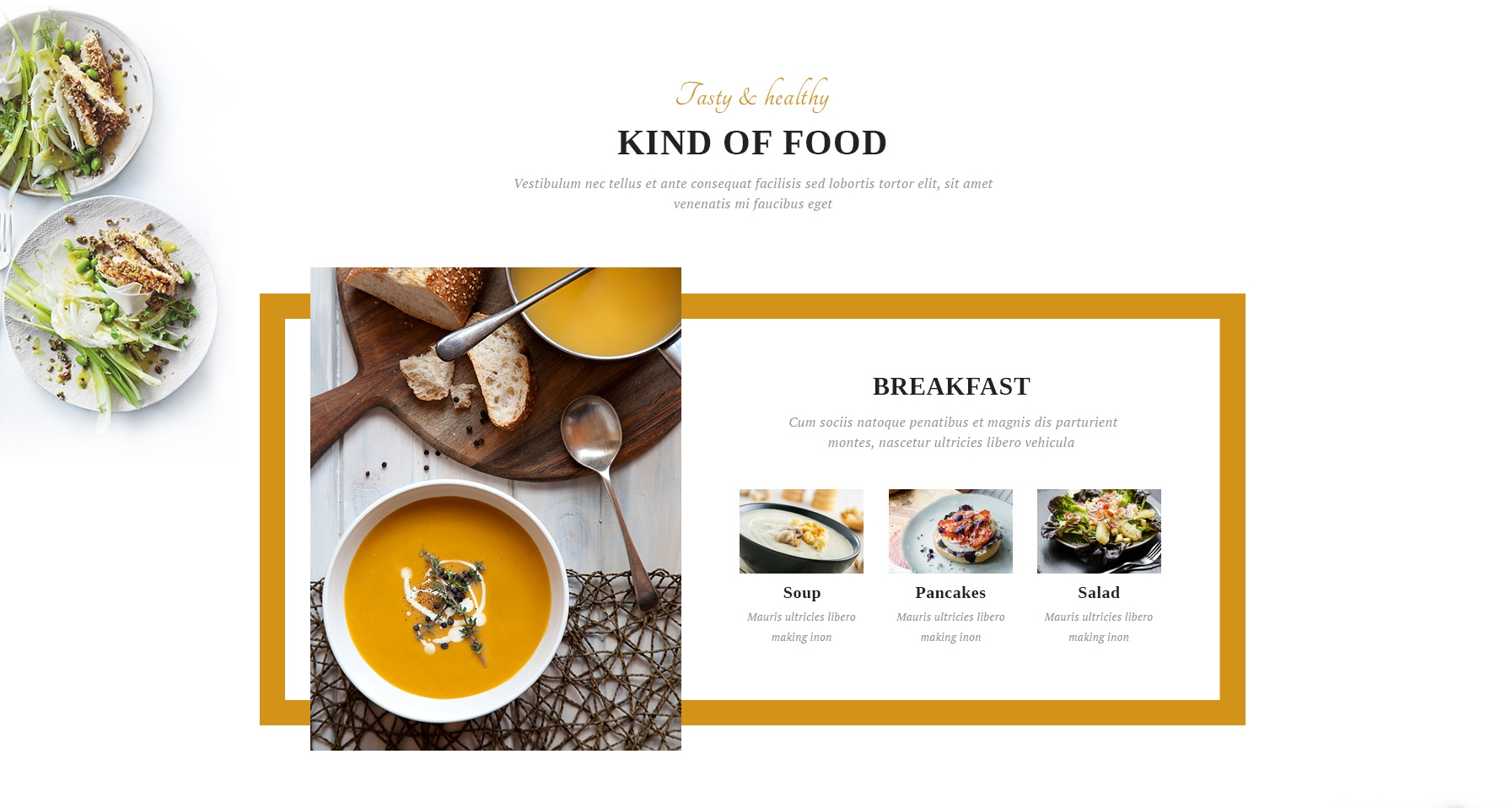 Mobile Bootstrap Video Theme